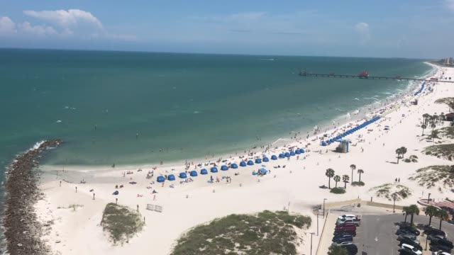 clearwater beach florida video - tampa stock videos & royalty-free footage