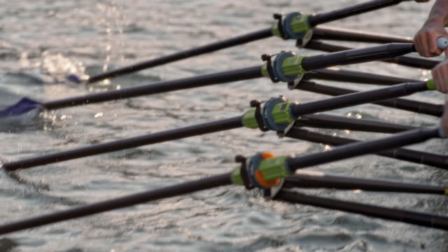 slo mo cleaver sculls striking the water surface - rowing stock videos & royalty-free footage