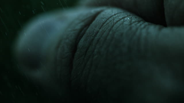 stockvideo's en b-roll-footage met clenching fist rain slow motion - extreme close up
