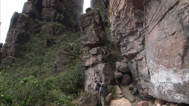 Cliff Of Auyantepui In Guiana Highlands