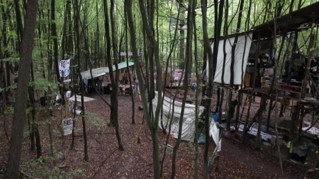 climate activists have been occupying part of the dannenrod forest in central germany in a bid to prevent the felling of trees to build a stretch of... - environmental issues stock videos & royalty-free footage