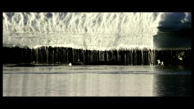 'big melt' report from antarctica graphicised sequence iceberg / icicles melting into sea / water flowing along dissolve to - antarctica melting stock videos & royalty-free footage