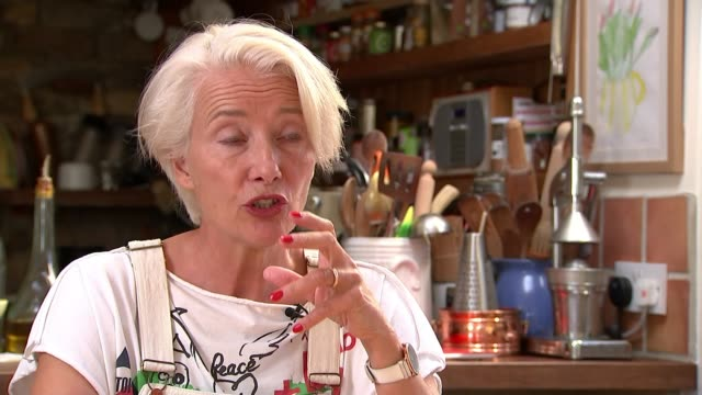 earth on the edge series dame emma thompson interview england int dame emma thompson interview sot - emma thompson stock videos & royalty-free footage
