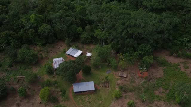 earth on the edge series people resisting deforestation by ranchers colombia group of farmers recording wildlife in amazon rainforest maricela silva... - ranch stock videos & royalty-free footage