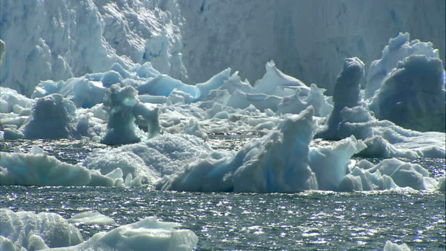 signs of global warming at north and south poles antarctica ext various of icebergs floating ice and melting ice - antarctica melting stock videos & royalty-free footage