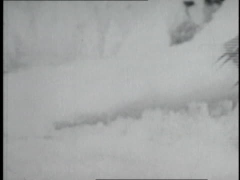 vidéos et rushes de climber's hiking boots walking in the snow / nepal - 1952