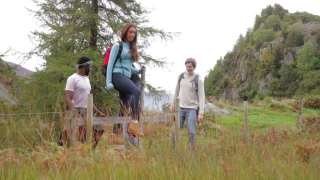 vídeos y material grabado en eventos de stock de guía de escalada en caminata - distrito de los lagos de inglaterra