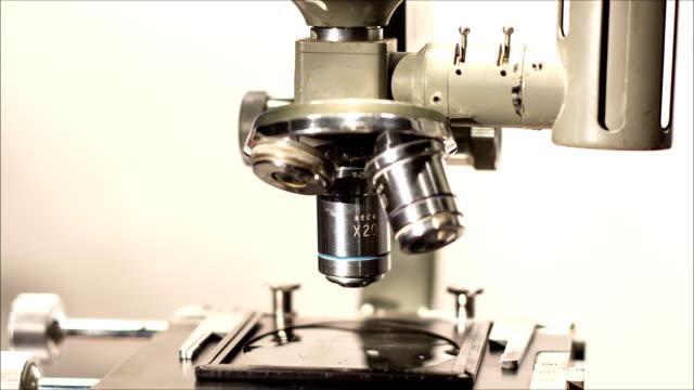 vídeos de stock, filmes e b-roll de retrô clínicos microscópio animating close-up - assassinato