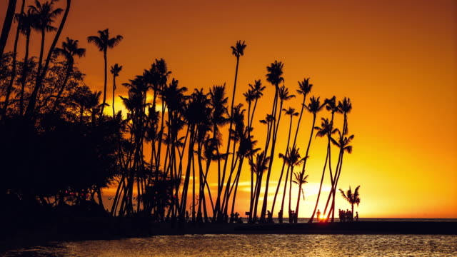 vidéos et rushes de clip2 anaeho'omalu beach sunset ending in 4k prores 422 hq - big island îles hawaï