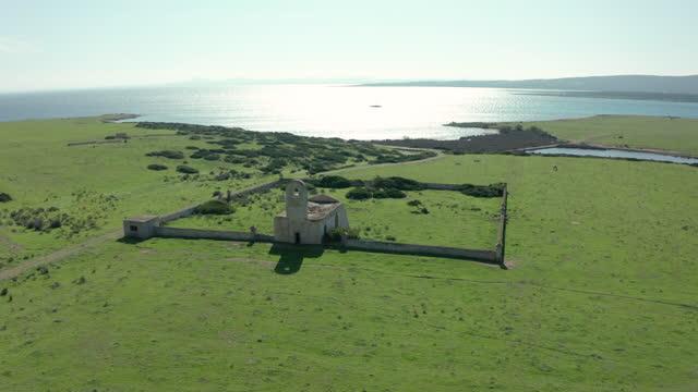 stockvideo's en b-roll-footage met 2 clips! asinara island, sardinië - italië - wildreservaat
