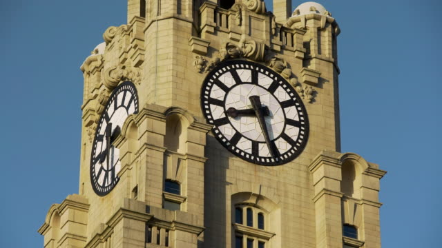 cu clock face on royal liver building, liverpool - clear sky stock videos & royalty-free footage