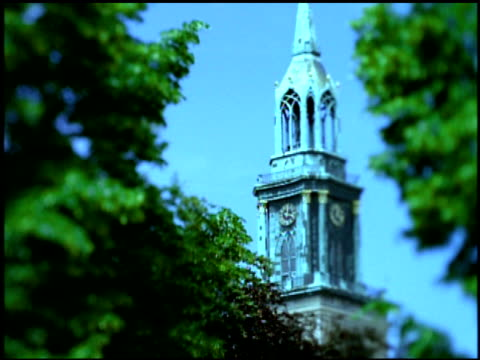 clock tower framed by trees, berlin - 尖塔点の映像素材/bロール