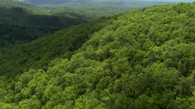 A close flight over a rolling green hilltop