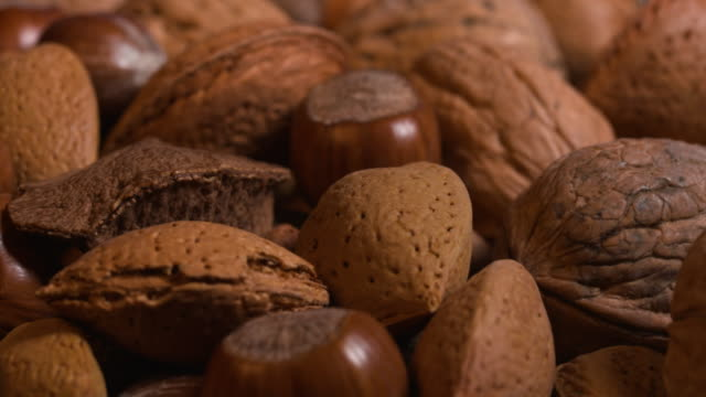 close panning shot across walnuts, hazelnuts and almonds. - hazelnut stock videos & royalty-free footage