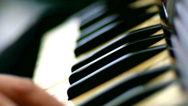 Close shot of a person playing an accordian.