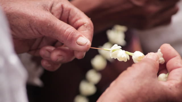 Close shot of a person threading jasmine flowers onto a stick at the Angkor Wat temple, Cambodia.