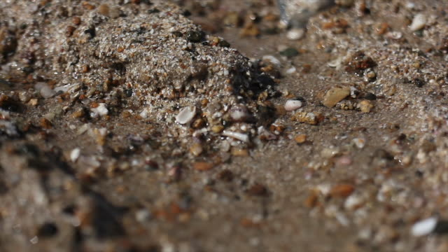 close shot of sand eroding - low tide stock videos & royalty-free footage
