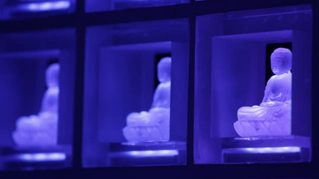 vídeos de stock e filmes b-roll de close shot purple color glass buddha statues illuminated by lightemitting diodes sit inside the ruriden columbarium at the koukokuji temple in tokyo... - buda