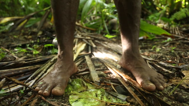 Close slide on dark skin feet standing on rainforest ground