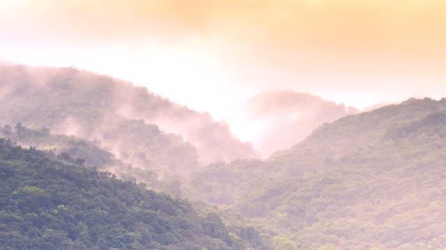 stockvideo's en b-roll-footage met close-up van 4 k beelden van een tropische storm in het caribisch gebied - jamaica