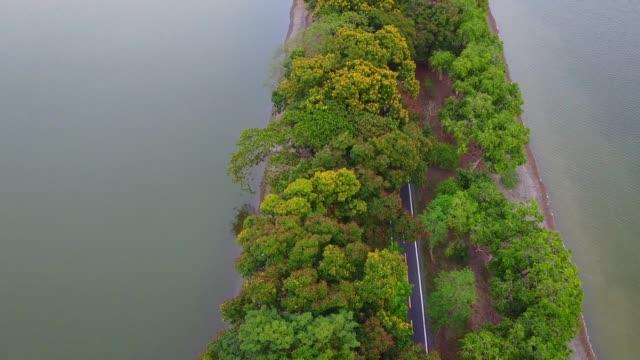 ショットを確立する森林を通る道路の視界の空中ポイントを閉じる - 有名原生地域点の映像素材/bロール