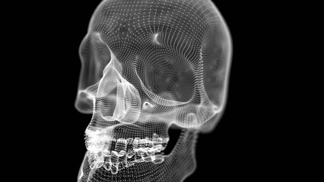 close up and dolly out of skull - tomb stock videos & royalty-free footage
