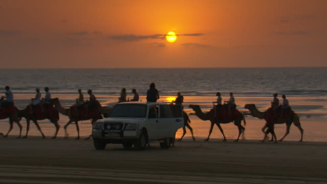 close up anonymous woman sitting on the roof of a 4wd vehicle parked on the beach watching a tourist camel train pass by / wider shot ocean and... - romantic sky stock videos & royalty-free footage