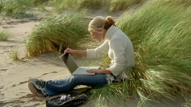 close up beach grass on windy day / zoom out woman sitting on sand, typing on laptop - オオハマガヤ属点の映像素材/bロール