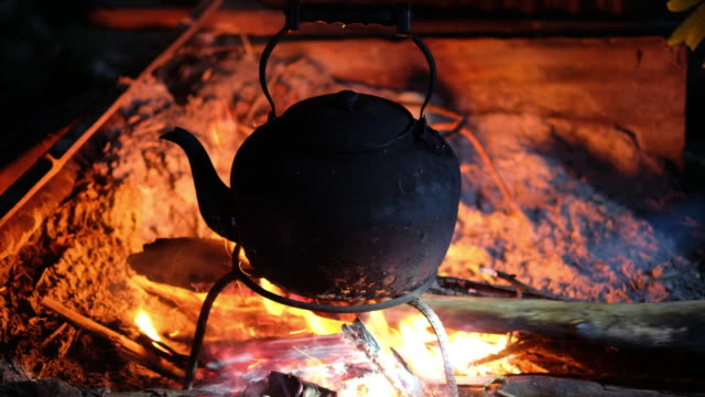 close up boiling water pot and push firewood in to fire at camping in forest. - boiling water stock videos and b-roll footage