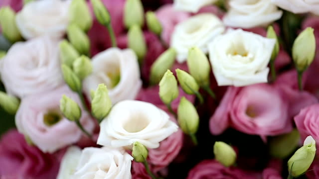 close up bouquet of blossoming rose in vase. - bouquet stock videos & royalty-free footage