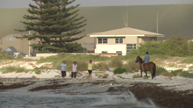 stockvideo's en b-roll-footage met close up breakwater rocks pan to man riding a horse along the beach dunes passes three women walking karara mining dock facility in the background - recreatief paardrijden
