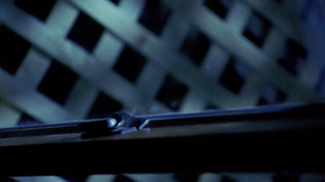vídeos y material grabado en eventos de stock de close up burglar examining window lock with flashlight - ladrón de casas