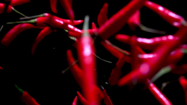 close up chilli direct to camera - pepper vegetable stock videos & royalty-free footage