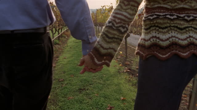 Close up clasped hands of couple as they  walk in vineyard/ wide shot couple walking away/ Napa Valley, California