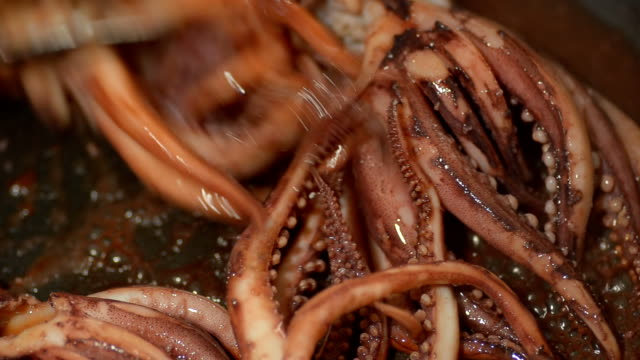close up cooked whisker squid - kitchenware shop stock videos & royalty-free footage