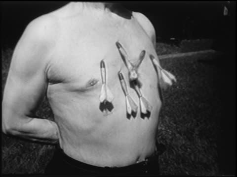 B/W 1951 close up darts being thrown into chest of shirtless man / newsreel