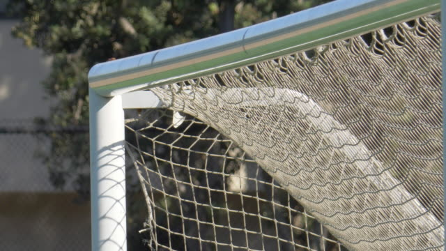 close up detail of a soccer goal and net football on a turf grass field. - カーテン レース点の映像素材/bロール