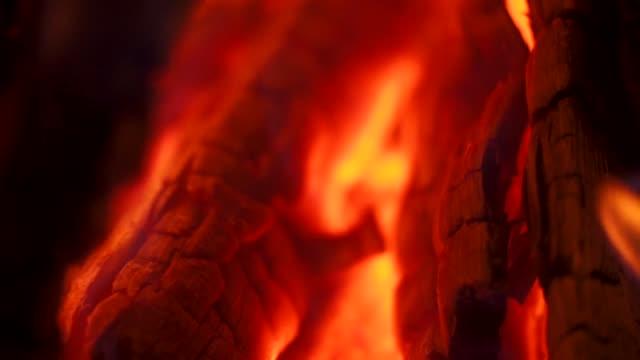 vídeos de stock, filmes e b-roll de feche acima do tiro do detalhe de chamas e de brasas da fogueira - firewood