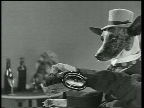 B/W 1930 close up dog wearing suit + hat pouring himself drink / Dogway Melody