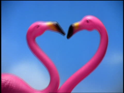 CHROMA KEY close up fake flamingoes kissing / blue background