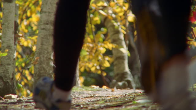 Close up feet of two people trail running through woods in Autumn / Bradbury Mountain, Maine
