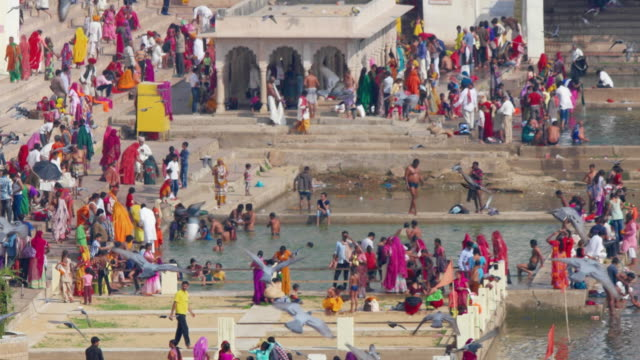 a close up few of hindu devotees taking the holy dip in the sacred waters of the pushkar sarovar or lake in rajasthan, india - pellegrino video stock e b–roll