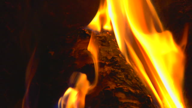 close up, fire - timber stock videos and b-roll footage