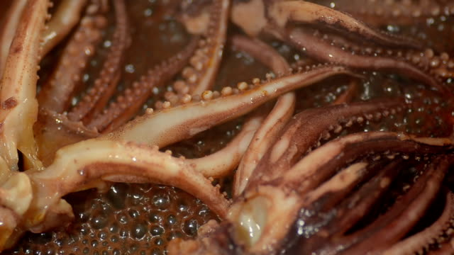 close up fry whisker squid - kitchenware shop stock videos & royalty-free footage