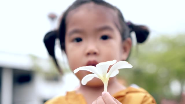 close up hand Asian girl-child with white flower