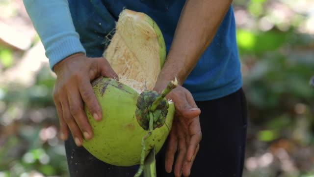 vídeos y material grabado en eventos de stock de el hombre de la mano de cerca está pelando el coco. - casco herramientas profesionales