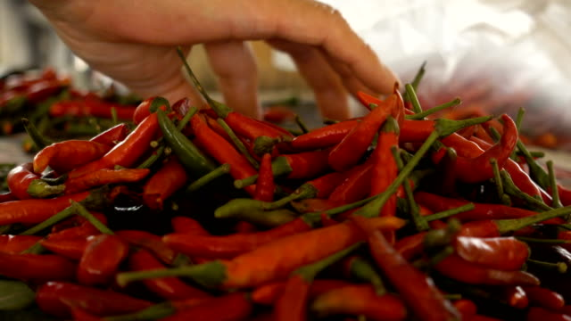 close up hand preparing chili pepper for cooking a thai food. - peperone video stock e b–roll