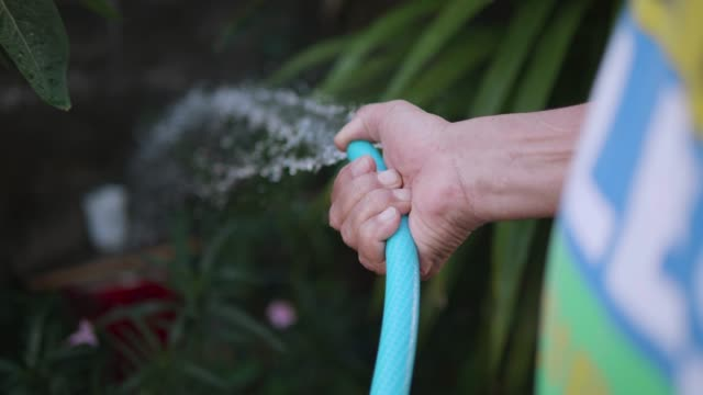 close up hand watering a tree. - sprinkler system stock videos & royalty-free footage