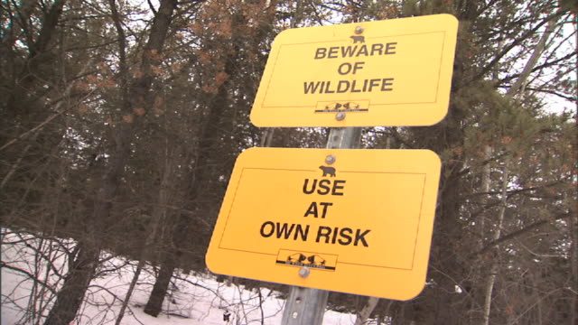 Close Up hand,held pan,right tilt,up , Two signs warn of of possible dangerous wildlife in a snow,covered forest. /
