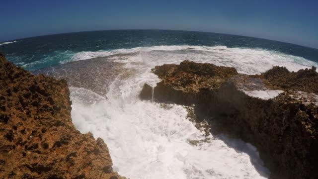 close up handheld shot showing a blowhole on the coast, carnarvon, western australia, australia - blåshål djurkroppsdel bildbanksvideor och videomaterial från bakom kulisserna